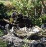 【筧・水鉢】筧にはコナラ材を、水鉢は香川県産庵治石の水掘れ石。
