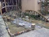 若林区の庭