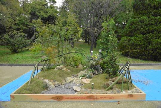 湧くワクする庭