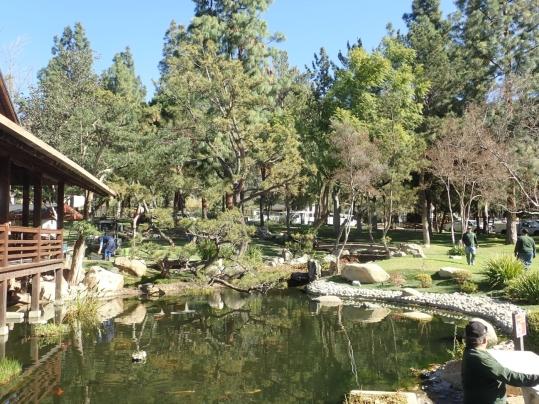海外日本庭園